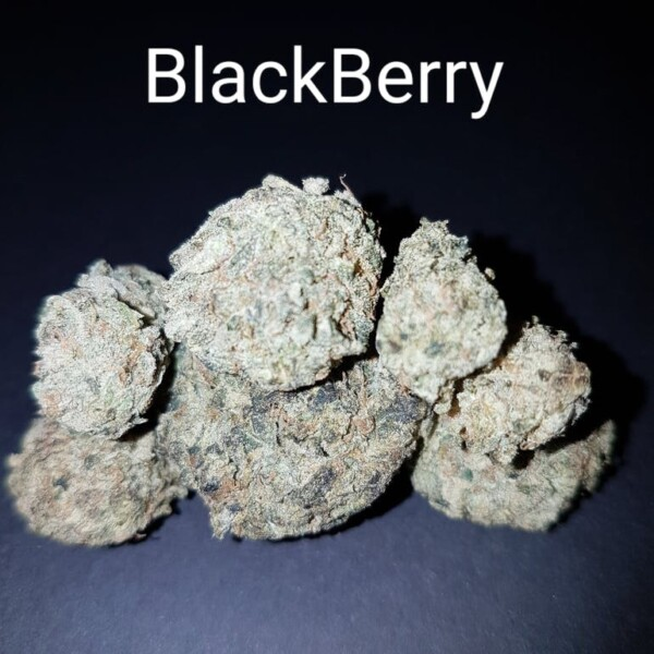 Black_Berry_190