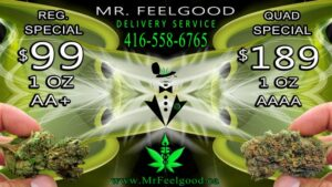 29939772 25860328 99 OZ weedmaps Mississauga ontario medical  marijuana cannabis weed special delivery dispensary service AAAA AA 199 Quad