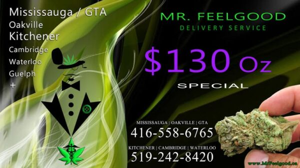 54245425 130 oz weedmaps Mississauga kitchener Oakville Cambridge waterloo ontario marijuana cannabis weed Bud dispensary special best delivery service