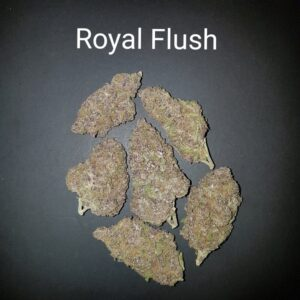 87236597 Royal Flush AAAAA Quad strain Weed Bud Dispensary weedmaps Canna West CannaWest Toronto GTA Greater Area Etobicoke North East York Downtown cannabis special delivery